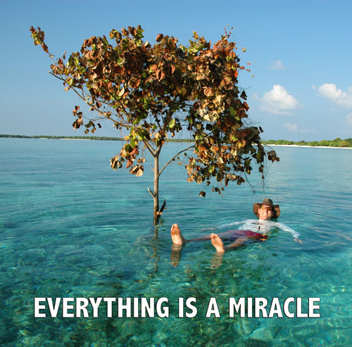 Everything Is A Miracle - Maximum Strength Positive Thinking