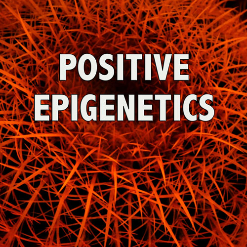Positive Epigenetics - Maximum STrength Positive Thinking